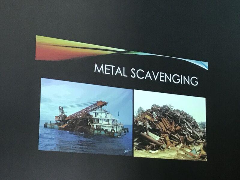 16-metal-scavenging